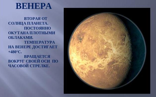 planeta venera v astrologii
